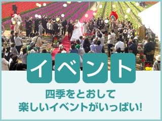 イベント:四季をとおして楽しいイベントがいっぱい!